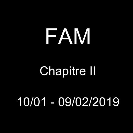Exposition FAM II en vidéo