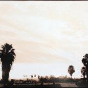 Hiro Matsuoka – A day in Los Angeles